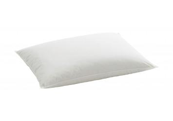 Organic Goose Pillow